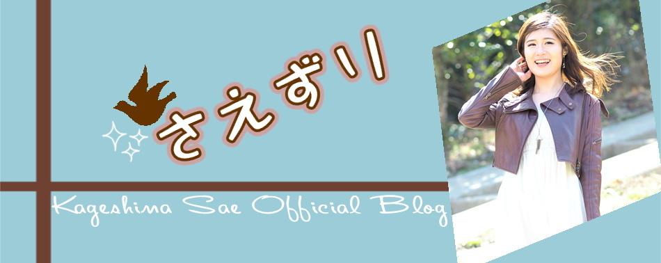 sae-blog.JPG